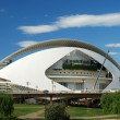 El Palau de les Arts Reina Sofia in the City of Arts and Sciences in Valencia, Spain — Stock Photo