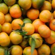 Stock Photo: Juicy Tangerines