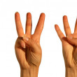 Counting Hands from one to five, isolated over white background — Stock Photo