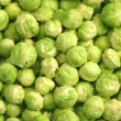 Foto de Stock  : Brussels sprouts