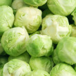 brussels sprouts&quot — Stock Photo #31994039