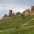 Stock Photo: Castle Thurant in Rhineland, Germany