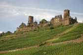 Castle Thurant in Rhineland, Germany — Stock Photo