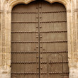Door in Cordova, Spain — Stock Photo #32014337