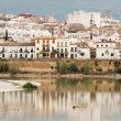 Old town of Corodova with the Guadalquivir river in foreground — Stock Photo