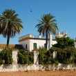Farmhouse with palmtrees in Spain — Stok fotoğraf