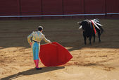 Torero in the bullfighting arena in Spain — Stock Photo