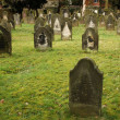 Jewish Graveyard — Stock Photo