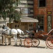Horse-drawn carriage in a traditional American western town — Foto Stock