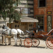 Horse-drawn carriage in a traditional American western town — Stock Photo #32030001