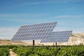 Solar panels on an orange plantation in Spain — Stock Photo