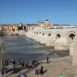 Roman Bridge in Cordoba, Spain — Stock Video
