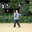 Stock Photo: Chinese mplaying Yo Yo game in park. Shanghai, China