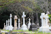 Cemetery in Hong Kong, China — Stock Photo
