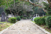 Cemetery park in Hong Kong, China — Stock Photo