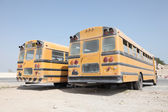 Two yellow school buses in a parking lot. Doha, Qatar, Middle East — Stock Photo