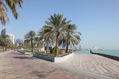 Date Palm Trees at the corniche in Doha, Qatar, Middle East — Stock Photo