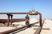 Oil pipeline in the desert of Bahrain. Middle East — Foto Stock