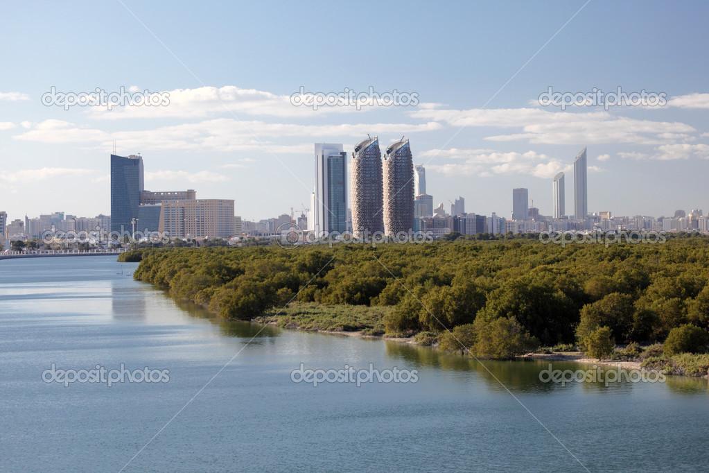 Skyline of abu dhabi al reem island with mangrove forest for Al manzool decoration abu dhabi