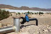 灌漑システム。パイプおよび水まきのための蛇口 — ストック写真