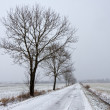 Winter road landscape in Poland — Stockfoto