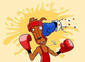 Kangaroo boxer — Stock Vector