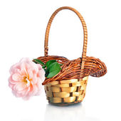 Beautiful pink rose in basket, isolated on white — Stock Photo