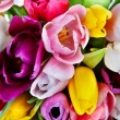 Tulips - beautiful spring flowers. Background - Stock Photo