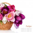 Basket with colorful bouquets of spring tulips flowers  isolated — Stock Photo