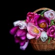 ������, ������: Basket with colorful bouquets of tulips flowers on black backgro