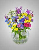 Beautiful Wild flowers bouquet in vase isolated on white — Stock Photo
