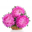 Pink and purple peony bunch — Stock Photo #35983463