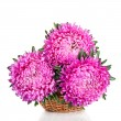 Stock Photo: Pink and purple peony bunch