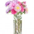 Asters bouquet. Beautiful flowers in vase isolated on white — Stock Photo