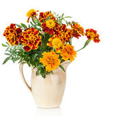 Flowers of Saffron (Tagetes) bush - used as a spice and medicinal plant- in ceramic jug — Stock Photo