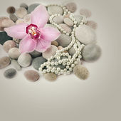 Spa stones, pink Orchid flower and pearls — Stock Photo
