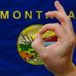 Ok gesture in front of montana us state flag - Stock Photo