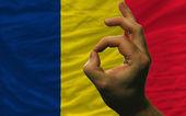 Ok gesto před Čad státní vlajka — Stock fotografie