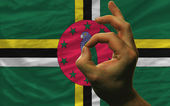 Ok gesture in front of dominica national flag — Zdjęcie stockowe