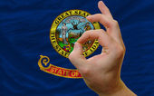 Ok gesture in front of idaho us state flag — Stock Photo