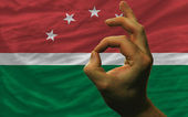 Ok gesture in front of maghreb national flag — Stock Photo