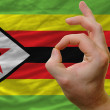 Ok gesture in front of zimbabwe national flag - Stock Photo