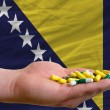 Stock Photo: Holding pills in hand in front of bosniherzegovinnational fl