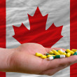 Holding pills in hand in front of canada national flag - Stock Photo
