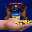 Stock Photo: Holding pills in hand in front of michigus state flag