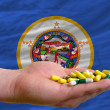 Stock Photo: Holding pills in hand in front of minnesotus state flag