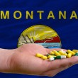 Stock Photo: Holding pills in hand in front of montanus state flag