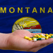 Holding pills in hand in front of montana us state flag - Stock Photo