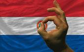 εντάξει χειρονομία μπροστά από την εθνική σημαία της παραγουάης — Φωτογραφία Αρχείου