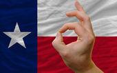 Ok gesto před texas nás státní vlajky — Stock fotografie